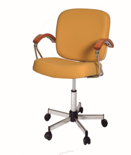 5992A Samantha Desk Chair